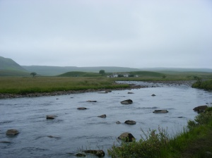 41 river tees