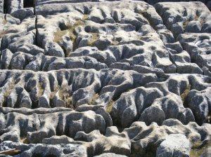 14 Limestone Pavement