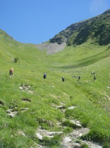 359 D11 path from hell to Col du Tricot